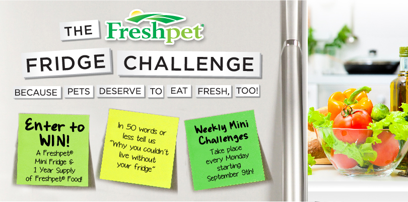 FreshPet Fridge Challenge
