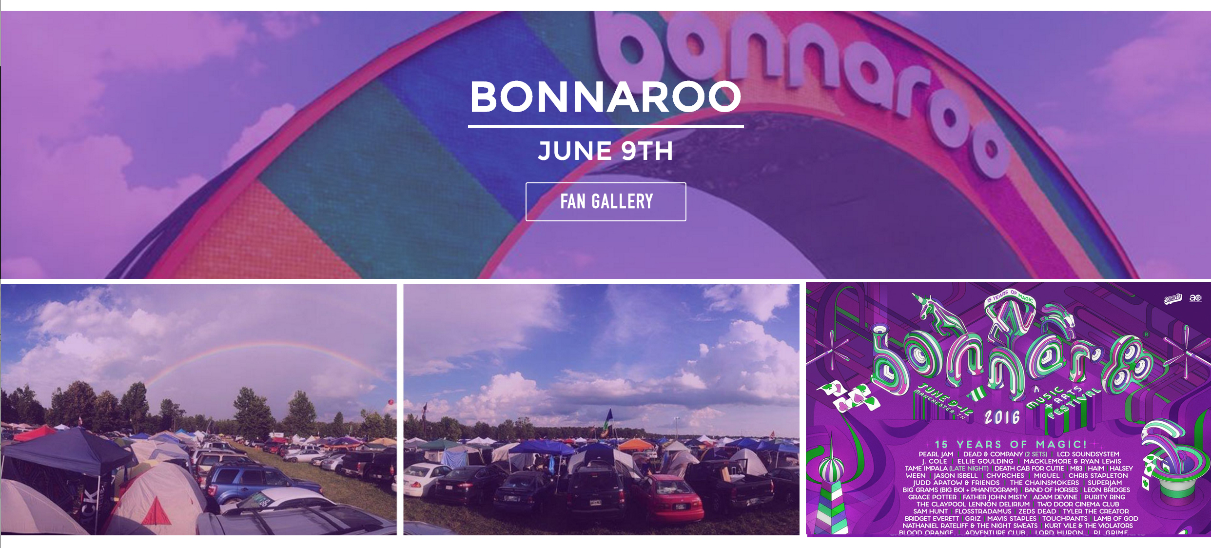 Bonnaroo Fan Gallery