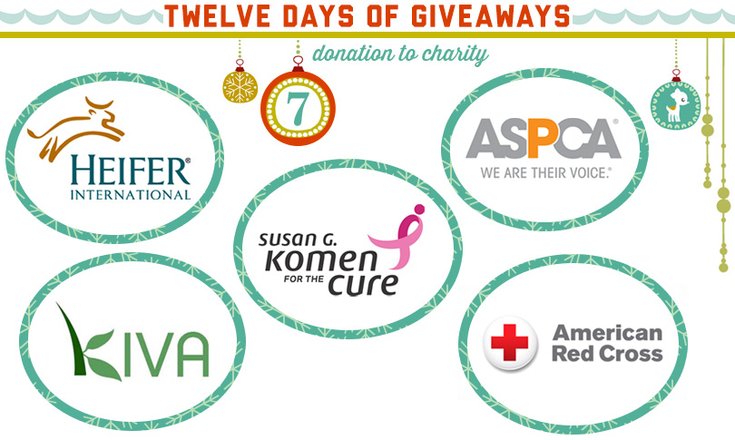 12 Days of Giveaways: Day Seven!